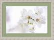 Moldura Branca com frisos dourados-1038I-3