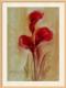 Moldura Natural Caixa 1.5 cm-168-4