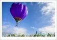 PEDRO ESTEVES - THE BALLOON-F1000415_MPR45X30-2