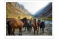 SERGE HORTA - WILD HORSES OF KYRGYZSTAN-F1000846_MPR60X43-2